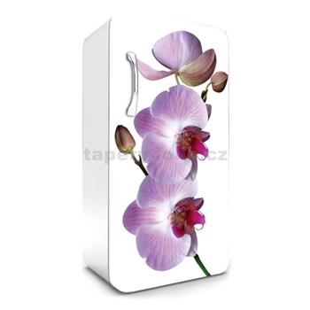 Samolepící tapety na lednici fialová orchidej rozměr 120 cm x 65 cm