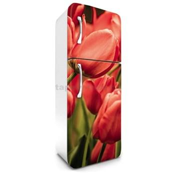 Samolepící tapety na lednici tulipány rozměr 180 cm x 65 cm