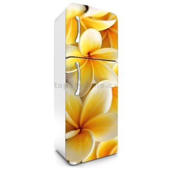 Samolepící tapety na lednici plumeria rozměr 180 cm x 65 cm