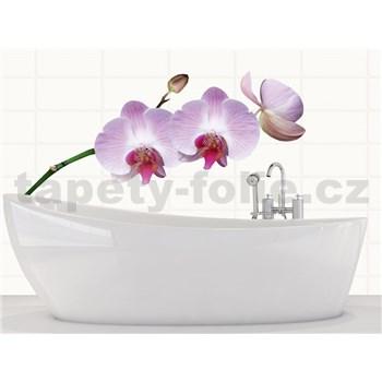 Samolepky na zeď Orchids 65 cm x 165 cm
