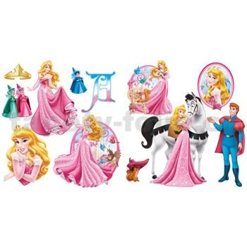 Samolepky na zeď Princezna rozměr 30 x 40 cm