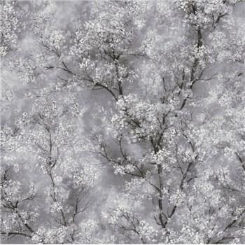 Vliesové tapety na zeď IMPOL New Wall florální vzor černo-bílý