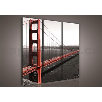Obraz na plátně Golden Gate Bridge 90 x 80 cm