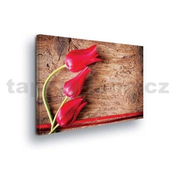 Obraz na plátně tulipány na dřevě 100 x 75 cm