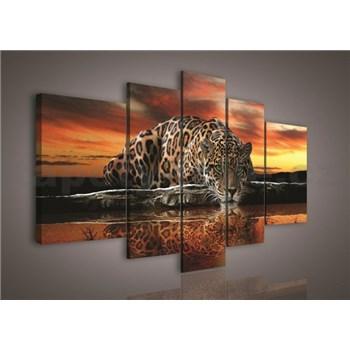 Obraz na plátně Jaguár 170 x 100 cm