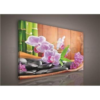 Obraz na plátně orchidej s kameny 75 x 100 cm