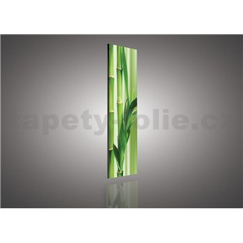 Obraz na plátně bambus 145 x 45 cm
