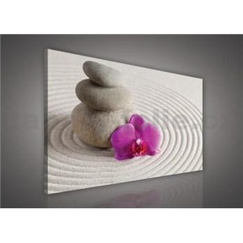 Obraz na plátně wellness orchidej 75 x 100 cm