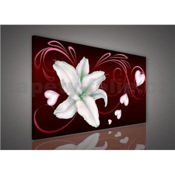 Obraz na plátně lilie na bordó podkladu 75 x 100 cm