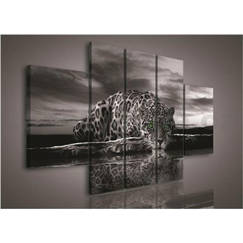 Obraz na plátně Jaguár zelené oči 170 x 100 cm