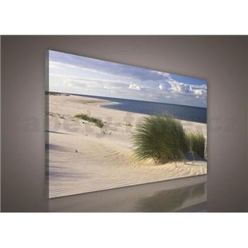 Obraz na plátně písečná pláž 75 x 100 cm