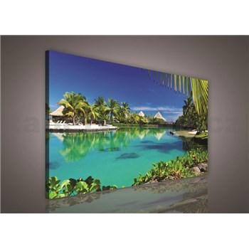 Obraz na plátně Paradise 75 x 100 cm