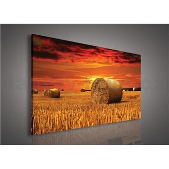 Obraz na plátně západ slunce nad polem 75 x 100 cm