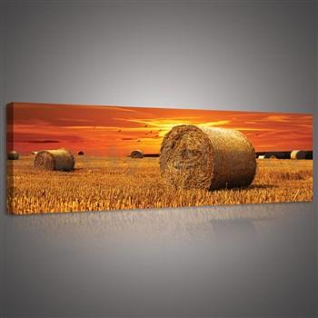 Obraz na plátně západ slunce nad polem 145 x 45 cm
