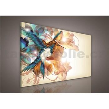 Obraz na plátně kolibřík 100 x 75 cm