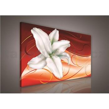 Obraz na plátně lilie na oranžovém podkladu 75 x 100 cm