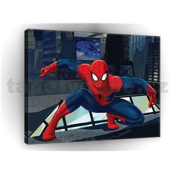 Obraz na plátně Spiderman 75 x 100 cm