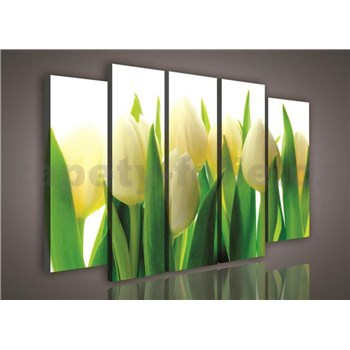 Obraz na plátně tulipány 150 x 100 cm