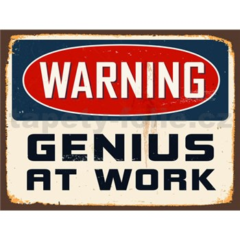 Retro cedule Warning Genius at Work 40 x 30 cm