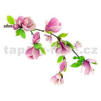 Samolepky na zeď květy na větvi růžové 87 cm x 110 cm