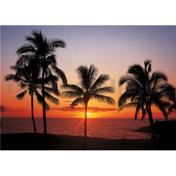 Vliesové fototapety Havaj rozměr 368 cm x 254 cm