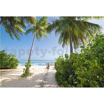 Vliesové fototapety palmová pláž rozměr 368 cm x 254 cm