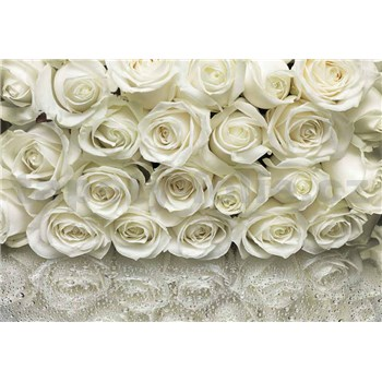 Fototapety růže bílé rozměr 368 cm x 254 cm