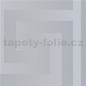 Luxusní vliesové  tapety na zeď Versace III řecký vzor stříbrný