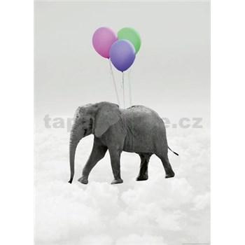 Vliesové fototapety slon a balónky rozměr 184 x 254 cm