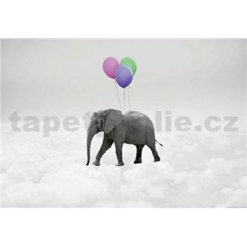Vliesové fototapety slon a balónky rozměr 368 cm x 254 cm