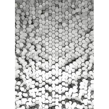 Fototapety 3D hexagony bílé rozměr 184 cm x 254 cm