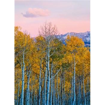 Fototapety břízy a hory rozměr 184 cm x 254 cm