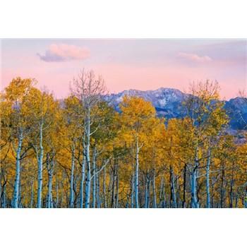 Fototapety břízy a hory rozměr 368 cm x 254 cm