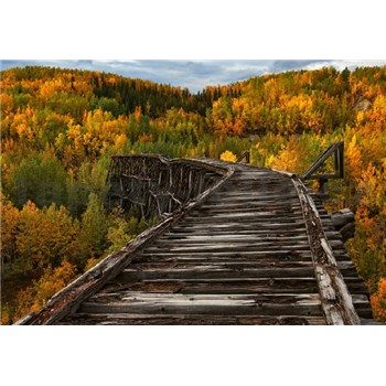 Fototapety most v lese rozměr 368 cm x 254 cm