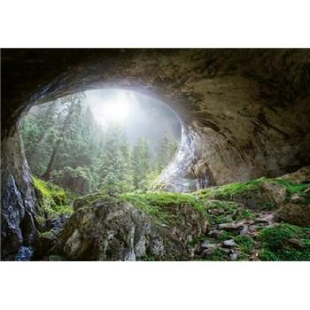 Vliesové fototapety jeskyně v lese rozměr 368 cm x 254 cm