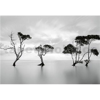 Vliesové fototapety stromy ve stojaté vodě rozměr 368 cm x 254 cm