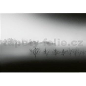 Vliesové fototapety krajina v mlze rozměr 368 cm x 254 cm