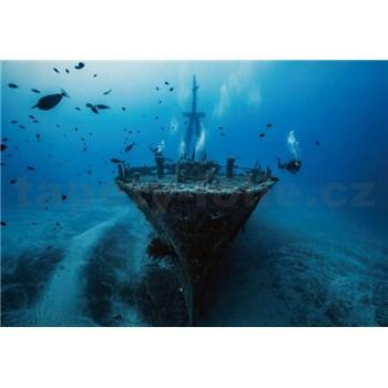 Vliesové fototapety vrak lodi rozměr 368 cm x 254 cm