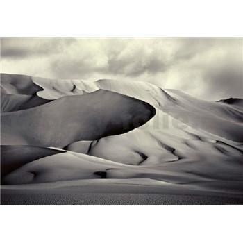 Fototapety poušť rozměr 368 cm x 254 cm