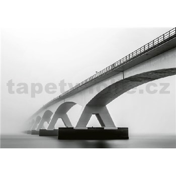 Vliesové fototapety architektura mostu rozměr 368 cm x 254 cm