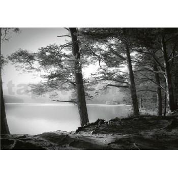 Vliesové fototapety lesní jezero rozměr 368 cm x 254 cm