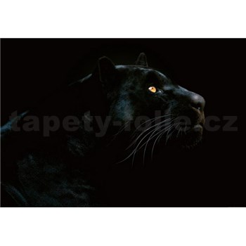 Vliesové fototapety jaguár rozměr 368 cm cm x 254 cm