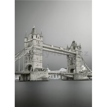 Fototapety most v Londýně rozměr 184 cm x 254 cm