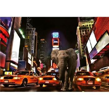 Vliesové fototapety slon v New Yorku rozměr 368 cm x 254 cm