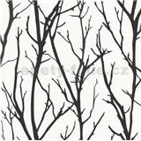 Vliesové tapety na zeď větve černé