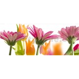 Vliesové fototapety jarní květy rozměr 375 cm x 150 cm