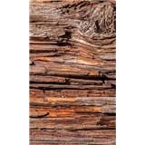 Vliesové fototapety kůra stromu rozměr 150 cm x 250 cm