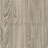 Samolepící fólie dub přírodní - 45 cm x 2 m