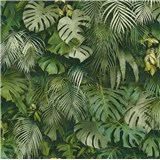 Vliesové tapety na zeď Greenery palmové listy zelené
