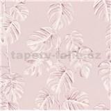 Vliesové tapety na zeď Greenery fíkusové listy růžové na růžovém podkladu